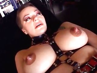 Prostate Play A Sex Industry Star Like A Cow