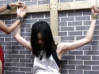 Asian Torment